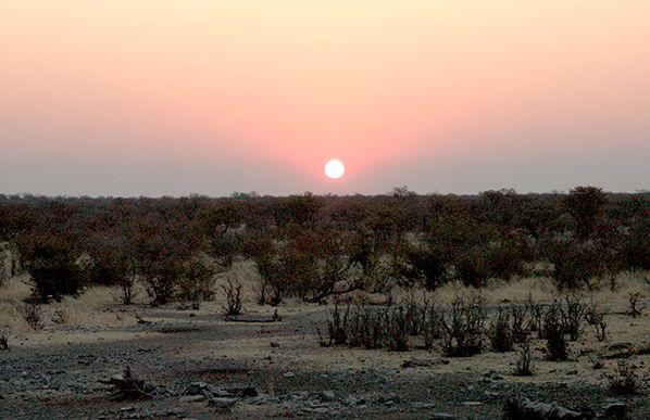 coucher soleil etosha namibie hdr