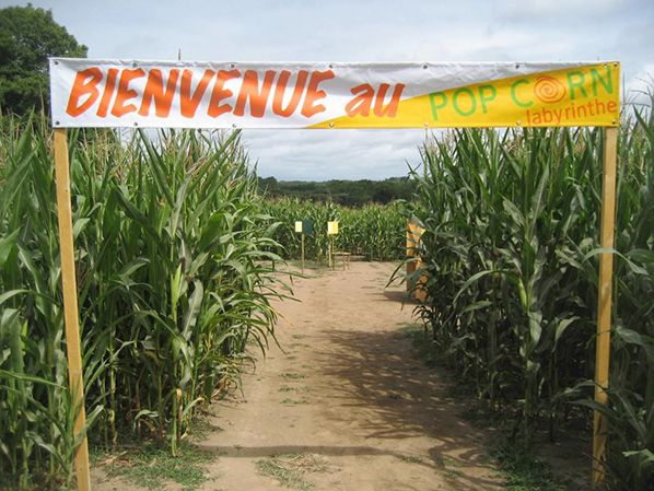 bernieshoot bienvenue pop corn labyrinthe seine et marne