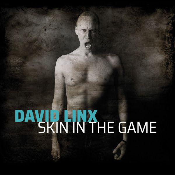 bernieshoot david linx skin in the game