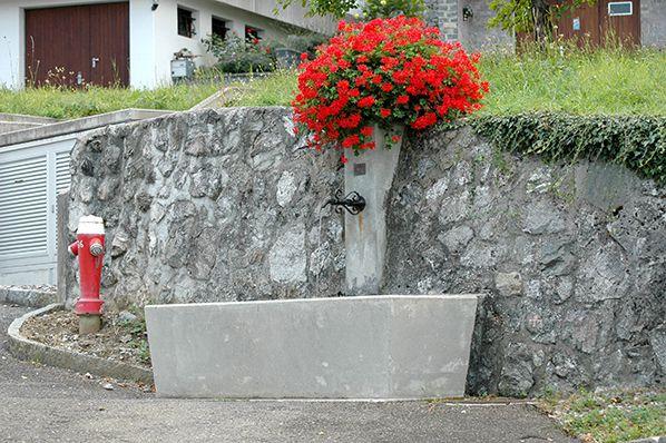 bernieshoot fontaine saint gingolph