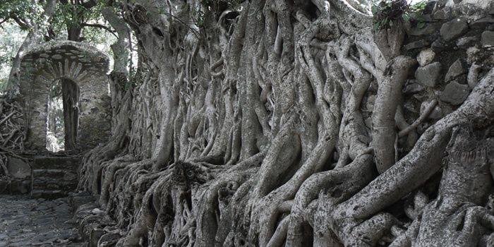 ... Lorsque l'amour nous ensorcelle / Aux grands arbres où un chœur bruit ...