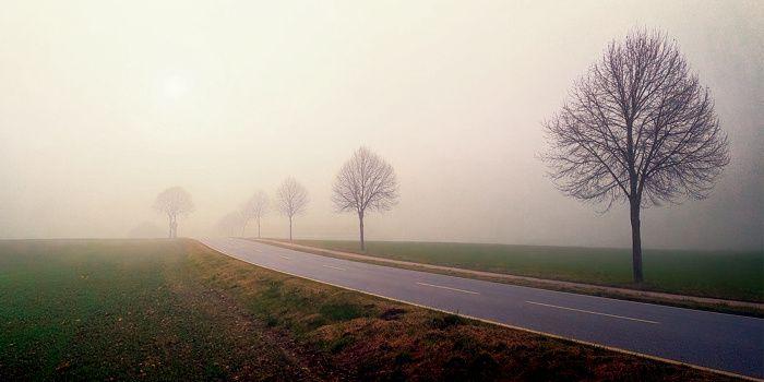 ... Amer, on prend son pli au désespoir profond, en cette brume rase où le remord vient poindre...
