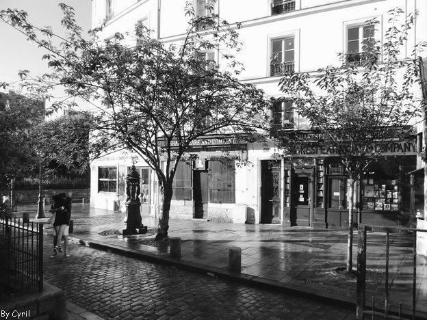 Paris que j'aime - Saint Michel
