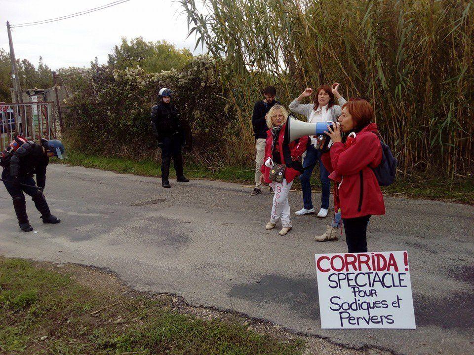 Gard: Une manifestation anticorridas à Rodilhan sous très haute surveillance