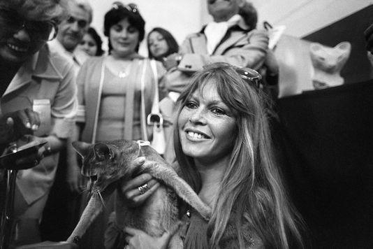 Brigitte Bardot, mythe et marque de Saint-Tropez..