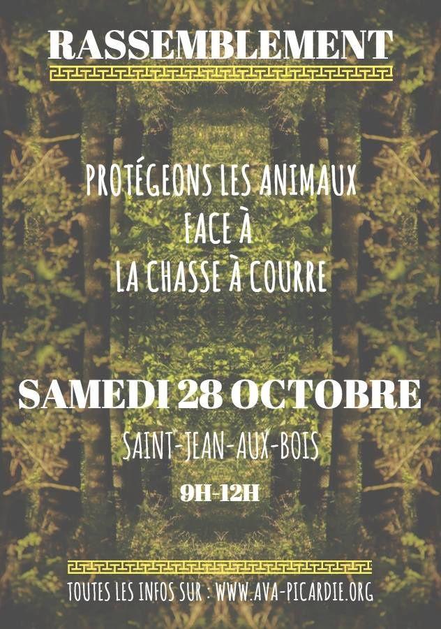 AVA – Abolissons la Vénerie Aujourd'hui ! Rassemblement à Saint-Jean-aux-Bois (60) !