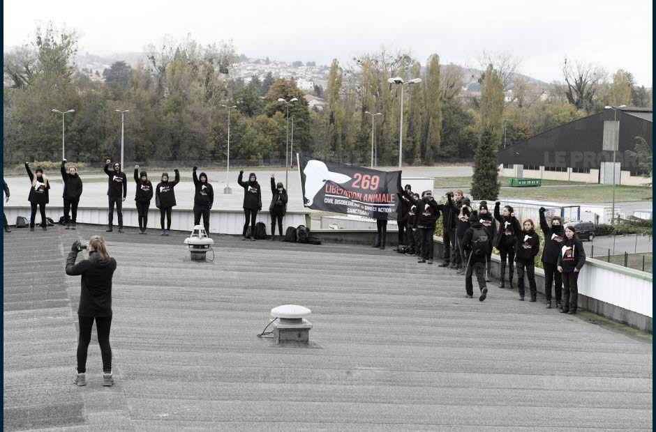 L'abattoir de La Talaudière occupé par des militants de la cause animale