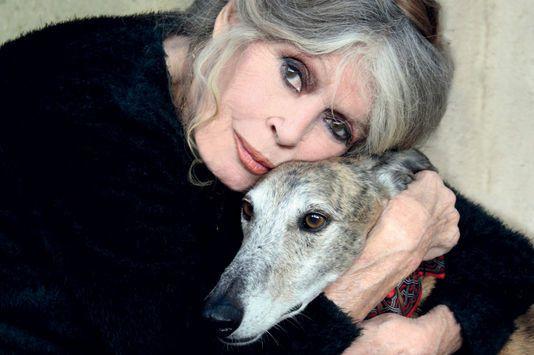 Sarkozy, Hulot, Mélenchon ... Brigitte Bardot dézingue la classe politique