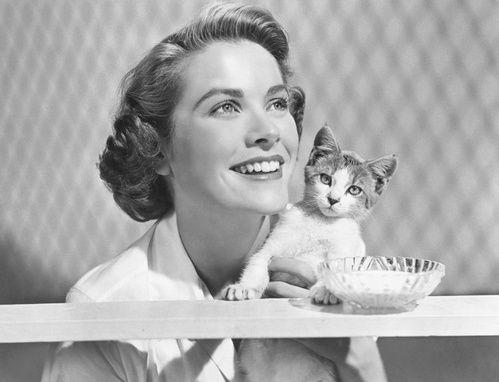 International Cat Day : le chat, meilleur ami des icônes