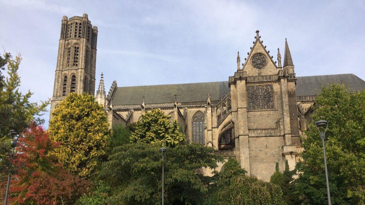 L'animal a été tué près de la cathédrale St-Etienne de Limoges le 8 octobre 2018