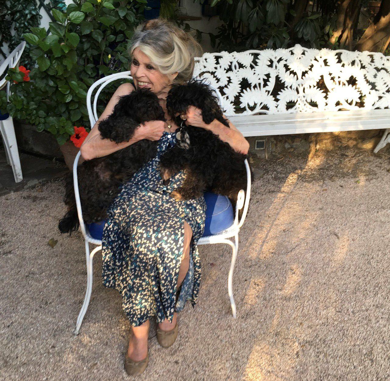Fiona et Filoute dans les bras de Brigitte Bardot...Photo Bernard D'Ormale