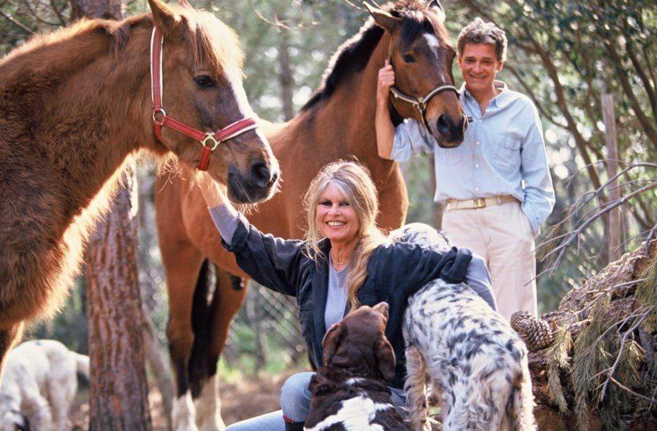 Depuis 1973, Brigitte Bardot a arrêté sa carrière pour se consacrer à la défense des animaux.