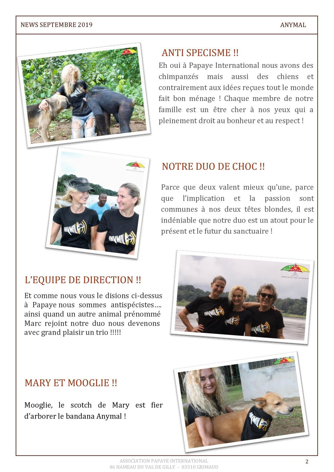 Papaye France : Newsletter
