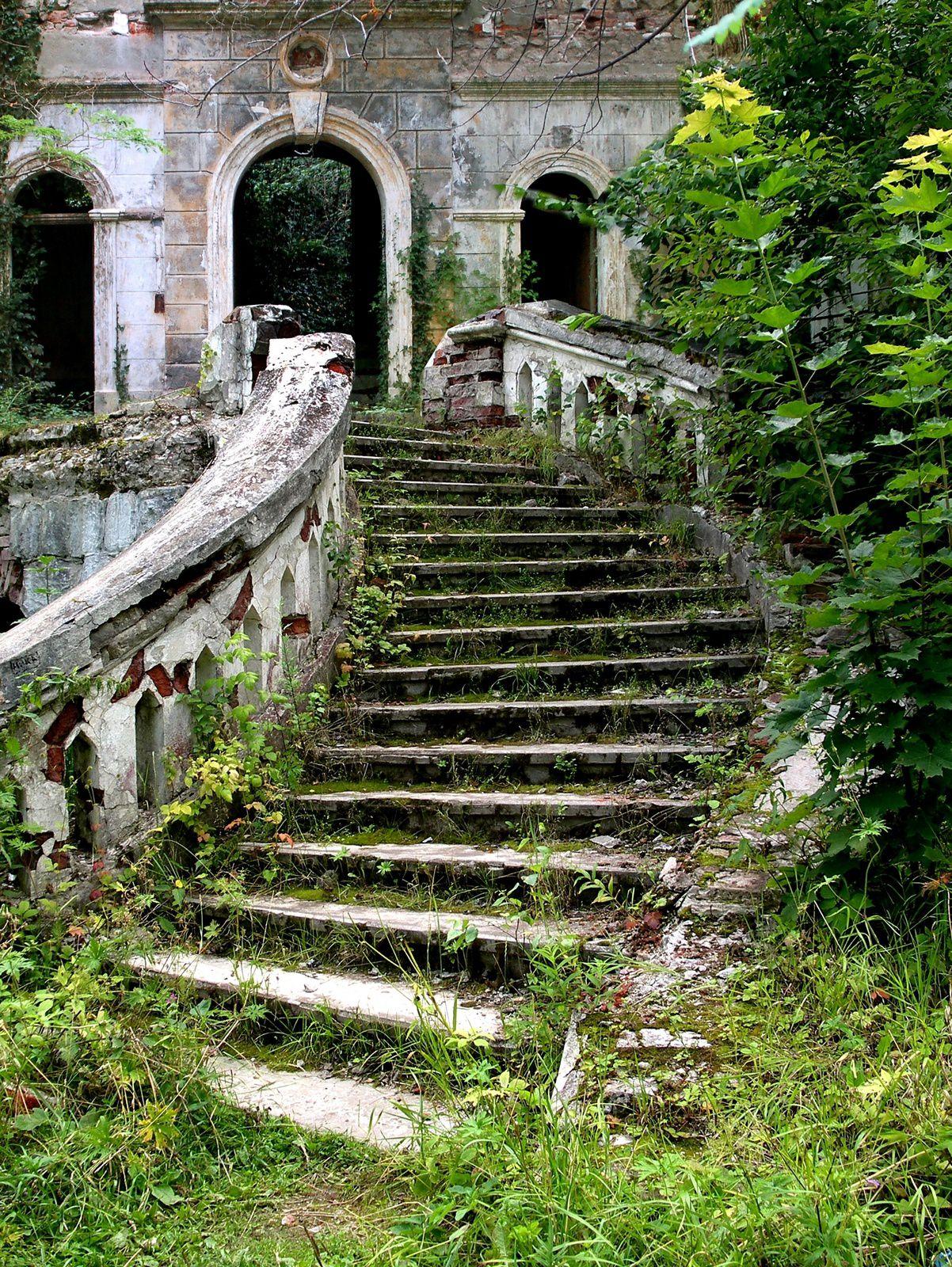 Arrières-plan (fonds d'écran) style fantastique - (Nature, forêt, monuments, mers...)
