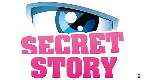 Audience de la quotidienne de Secret story 8.