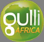 Lancement de la chaîne Gulli Africa, disponible dans 22 pays.