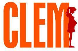 Audience J+7 : gros gain pour la série Clem sur TF1.
