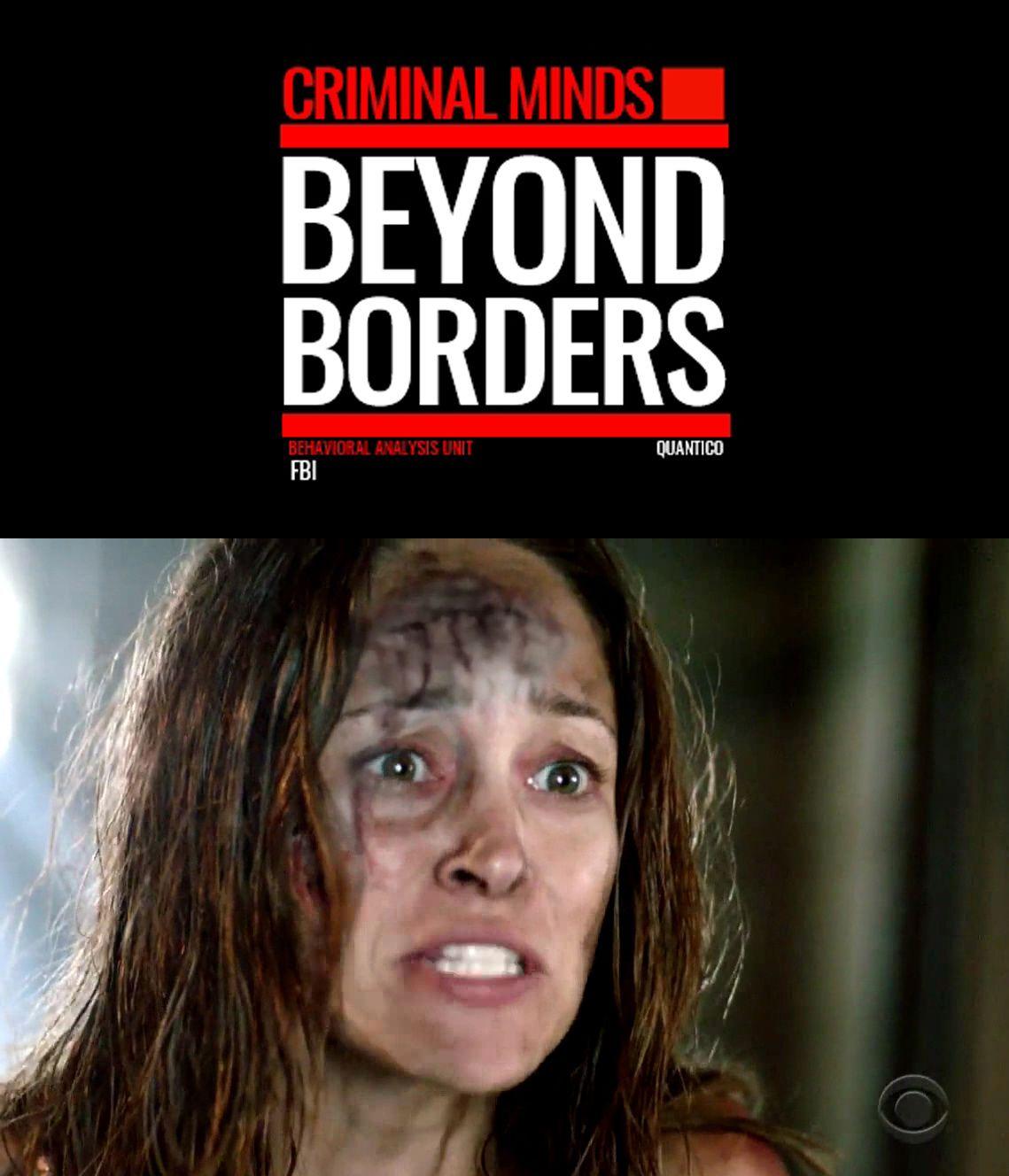 Belle hausse pour Criminal Minds: Beyond Borders (audience USA).