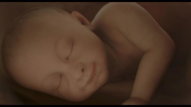 Une odyssée de la vie ce jeudi sur France 2 avec Nos bébés ont une histoire.