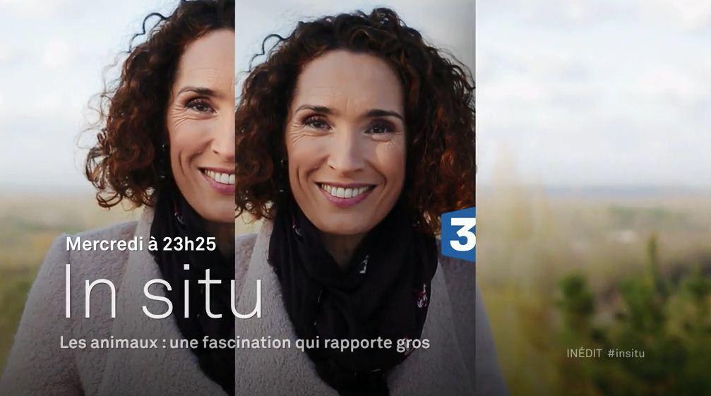 Les animaux, une fascination qui rapporte gros : IN SITU ce soir sur France 3.