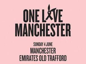 Les participants au concert One Love Manchester ce dimanche soir sur TMC.