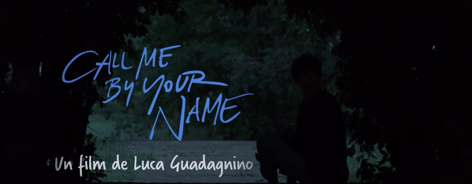 Bande-annonce du film Call me by your name.