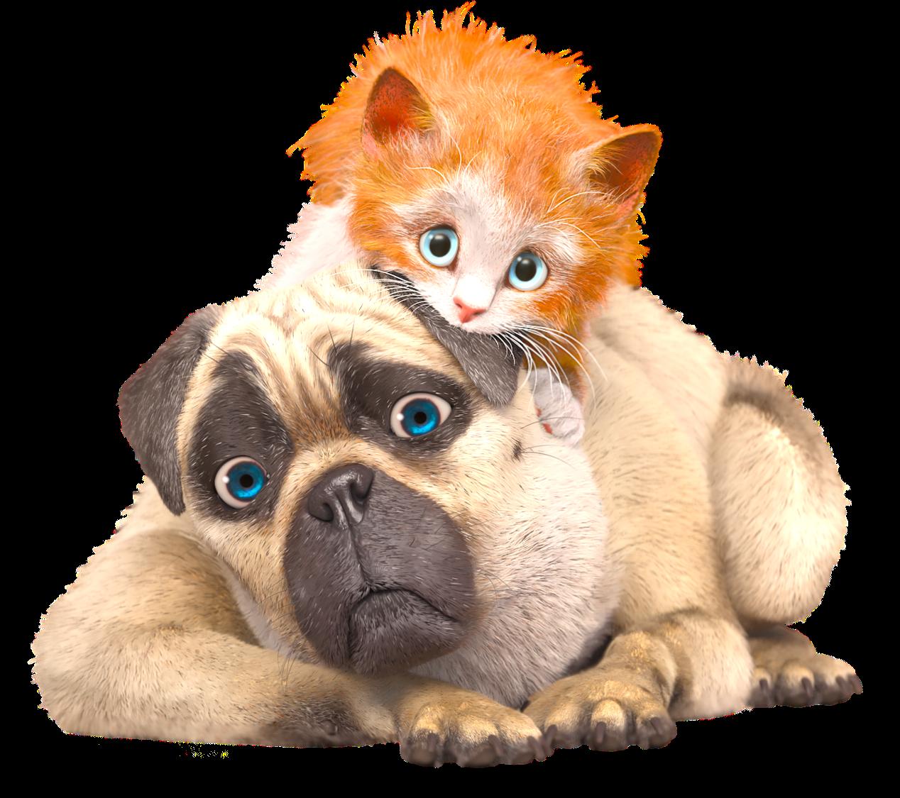 La série animée inédite Mike, une vie de chien, dès ce matin sur France 3.