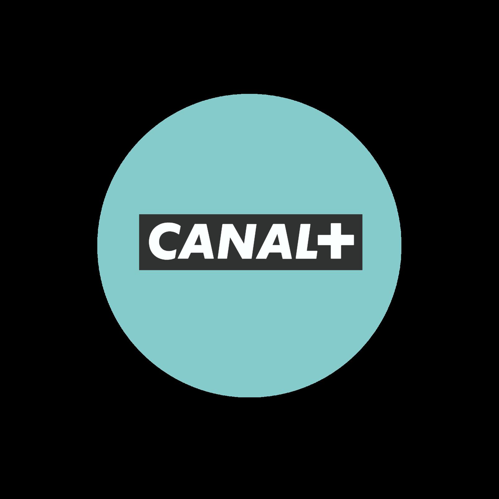 Canal+  a acquis les droits de diffusion de la finale de la Copa Libertadores.