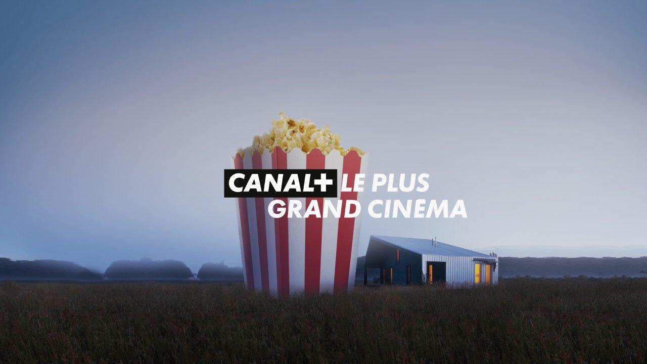 Une nuit à Cannes : programmation spéciale ce 20 mai sur Canal+.