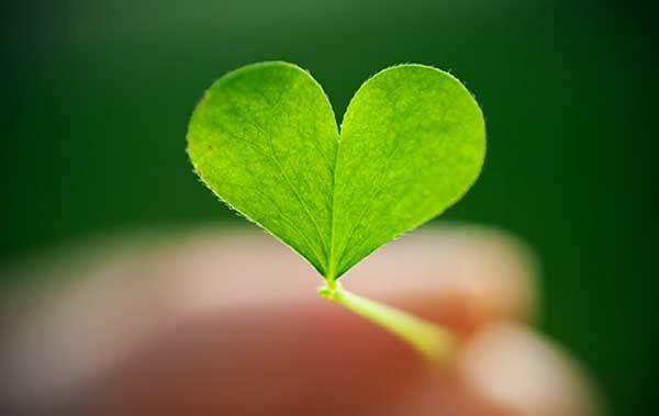 [Humeurs] Saint Valentin... ce qui est juste pour chacun...