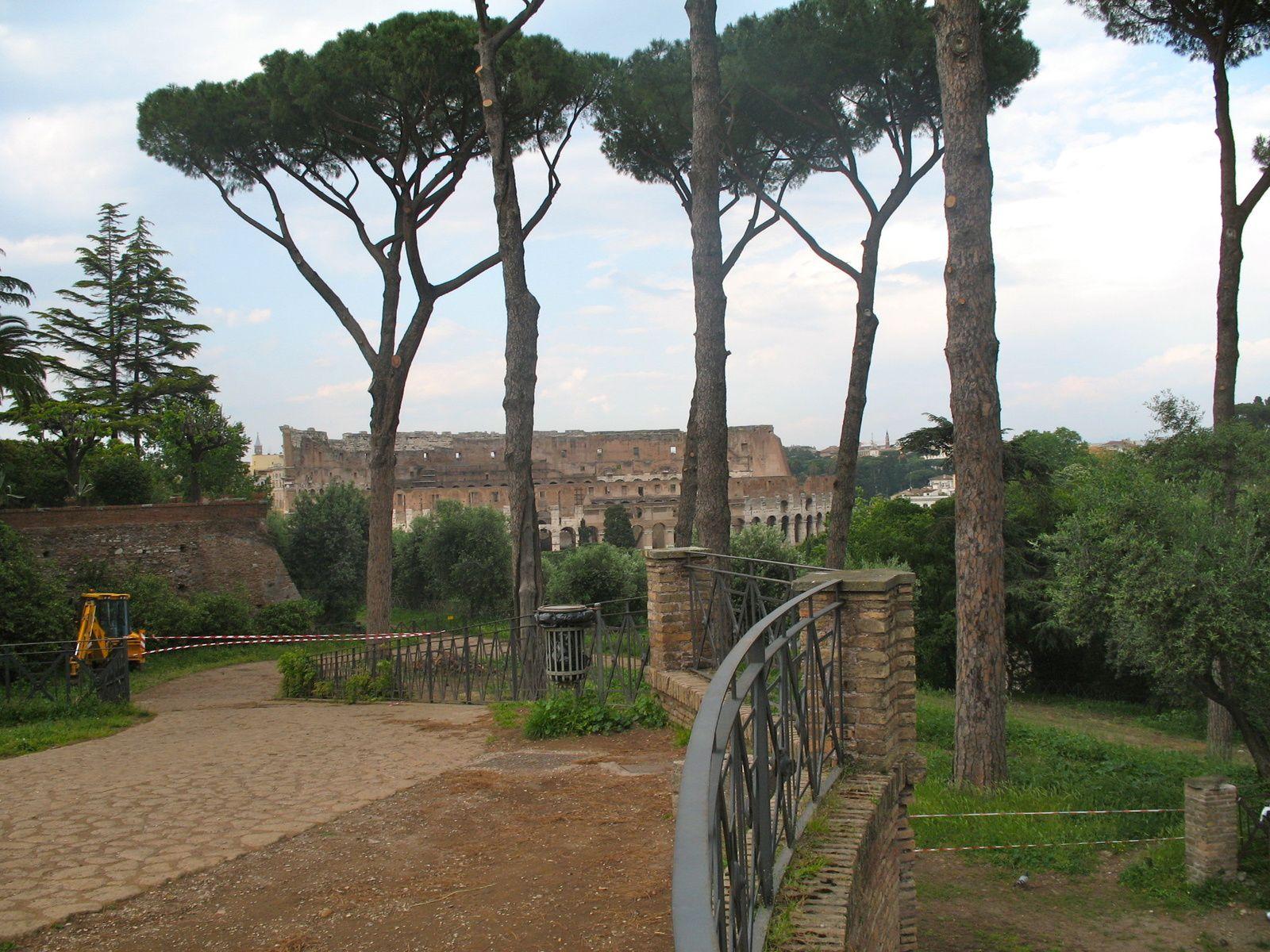 Dans l'Orti Farnesiani - vues sur le Forum des terrasses de l'Orti Farnesiani - vues sur le jardin depuis le Forum