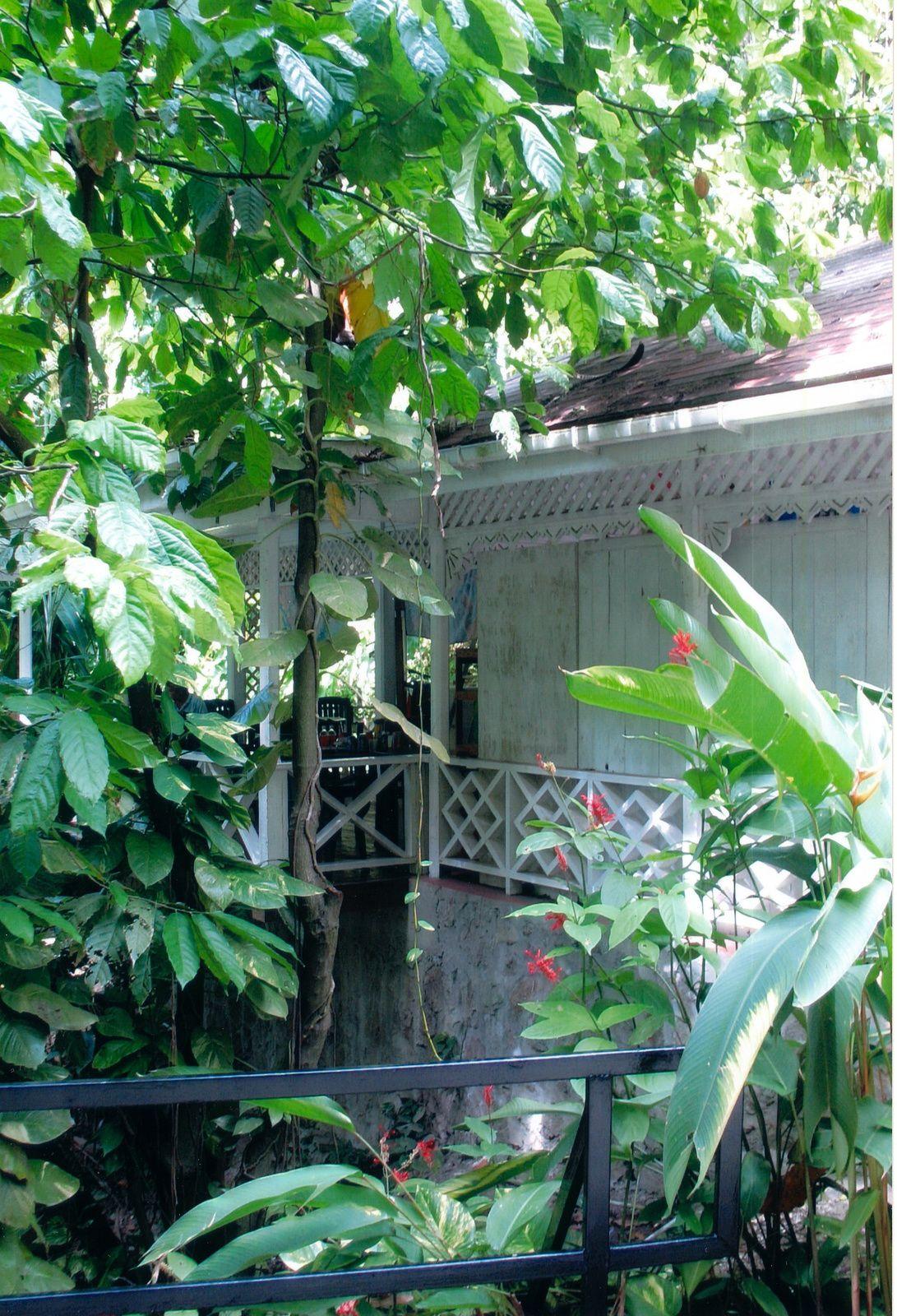 Diamond Botanical Garden - Sainte-Lucie, Caraïbes