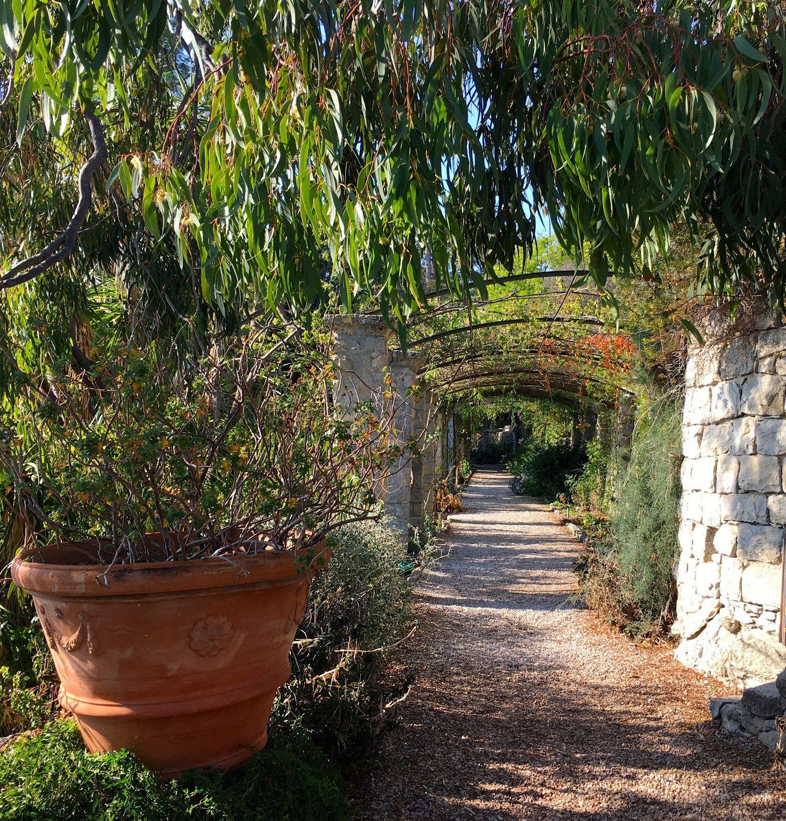 Jardin botanique Hanbury - Vintimille