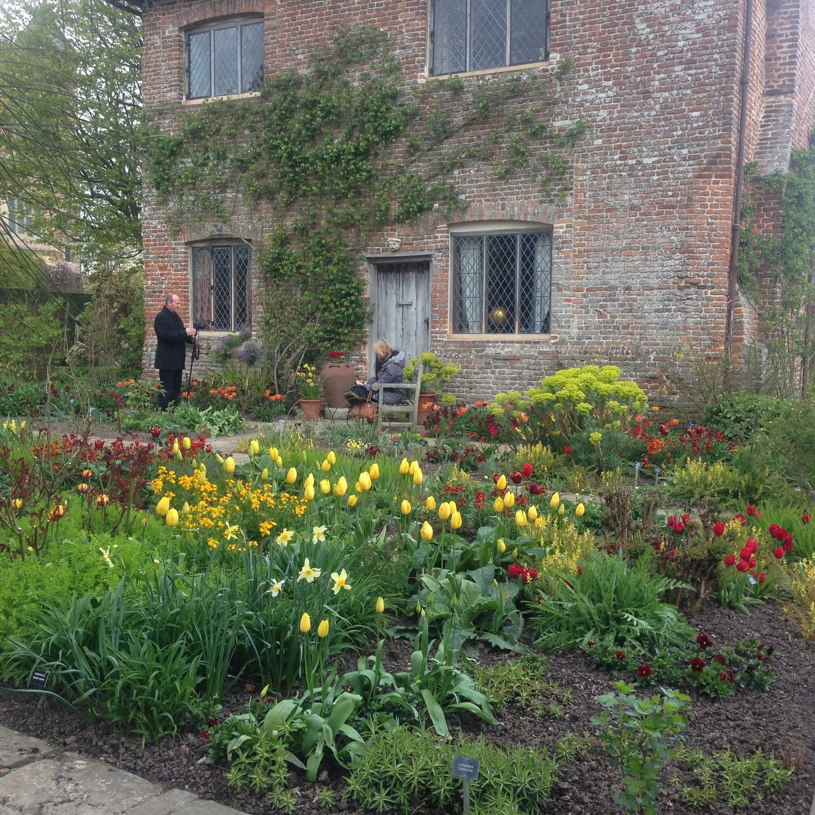 The sunset-coloured Cottage Garden
