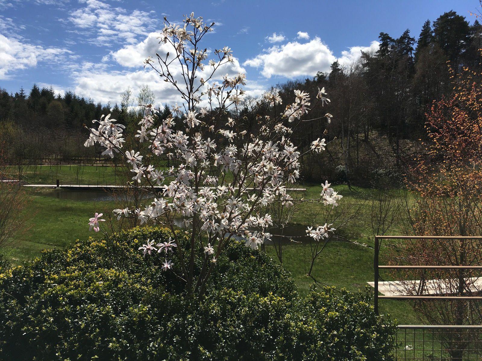 Les Jardins de Sothys - Corrèze