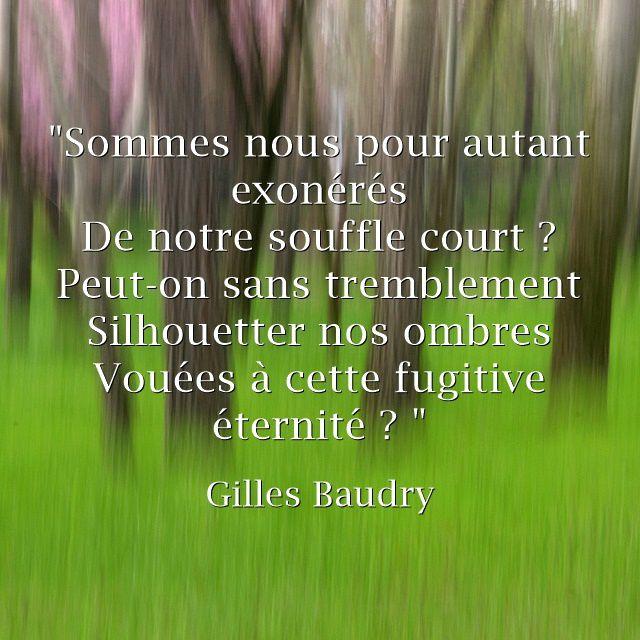 Fulguration - Gilles Baudry