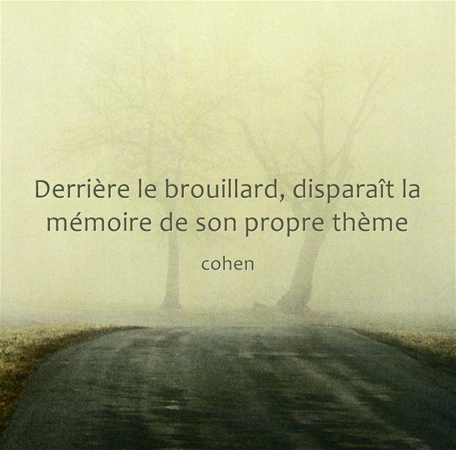 Fulguration - Cohen