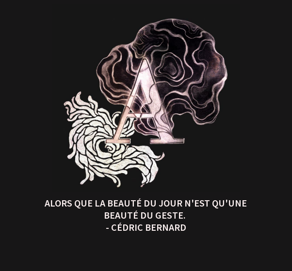 Fulguration - Cédric Bernard