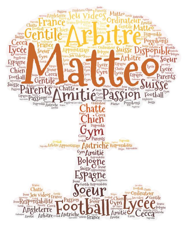 Je m'appelle Matteo et je suis un garçon surtout sympathique et disponible. J'aime jouer avec des jeux vidéo, regarder des films, travailler avec des graphiques, sortir avec mes amis et jouer au football. Je veux vous presenter mon portrait...