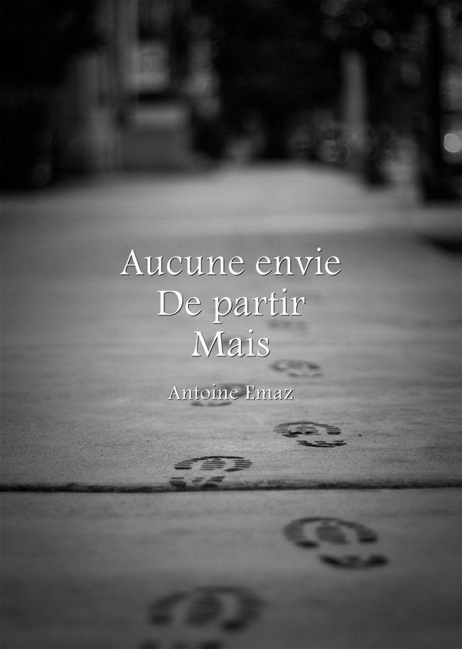 Fulguration - Antoine Emaz