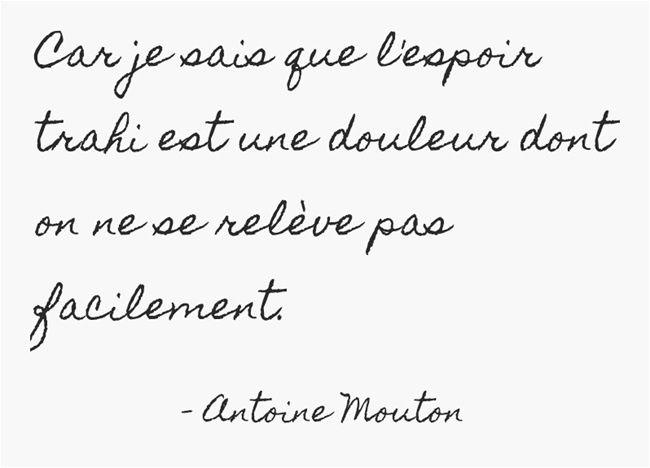 Fulguration - Antoine Mouton