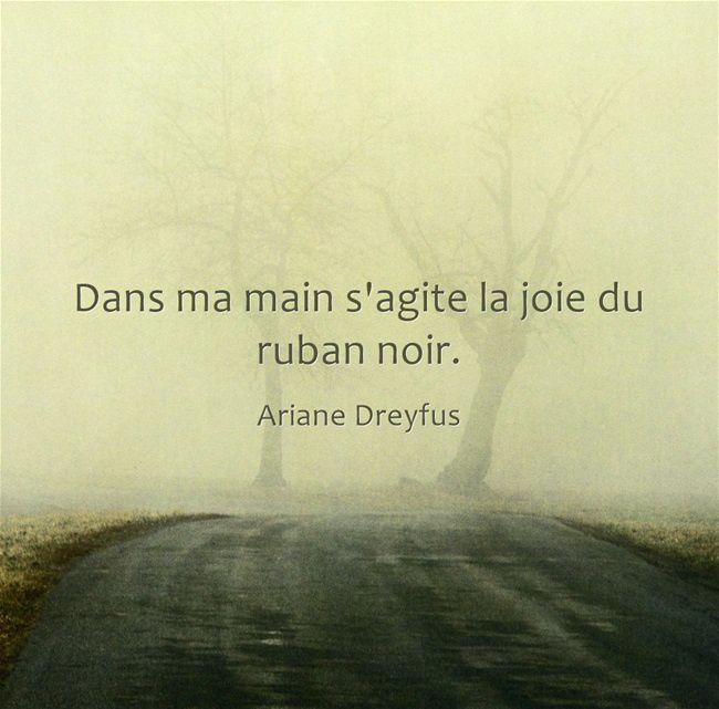 Fulguration - Ariane Dreyfus