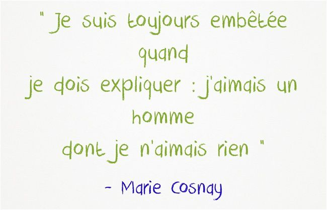 Fulguration - Marie Cosnay