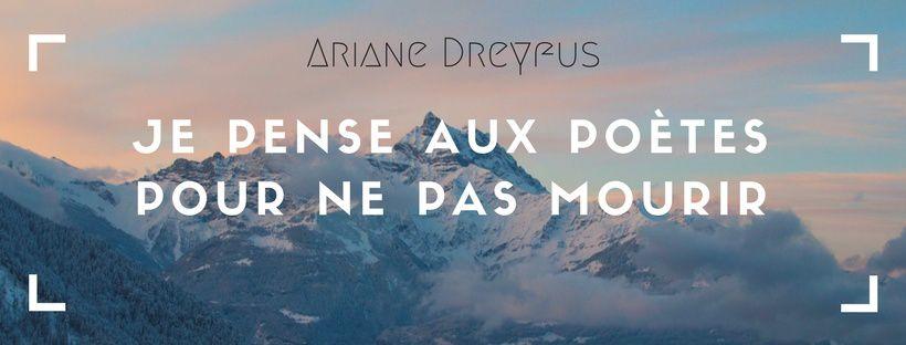 Fulgurations - Ariane Dreyfus