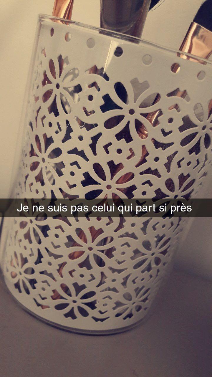 Snapoème - Ariane Dreyfus