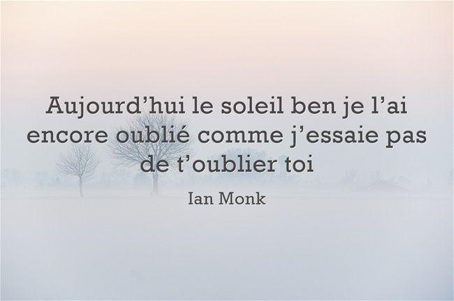 Fulguration - Ian Monk