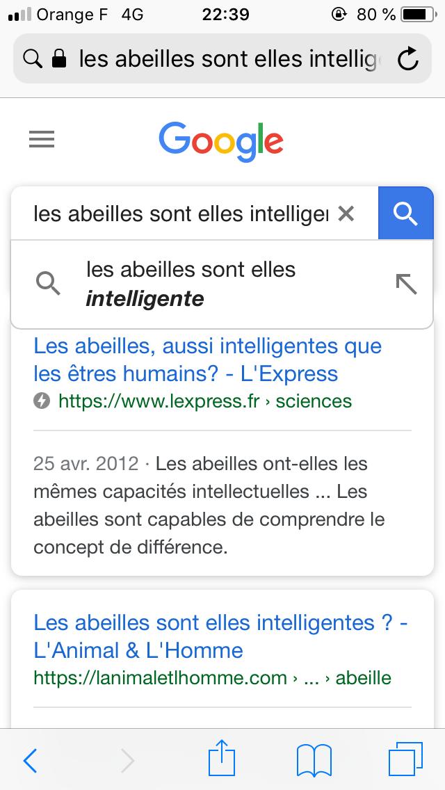 Traces numériques - Recherches Google Bazoches