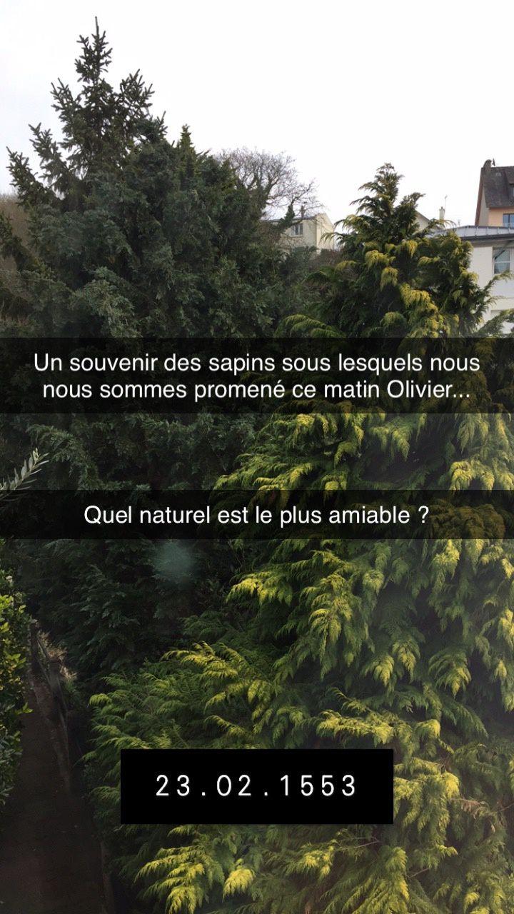 Dans le smartphone de Louise Labé- Sonnet XXI