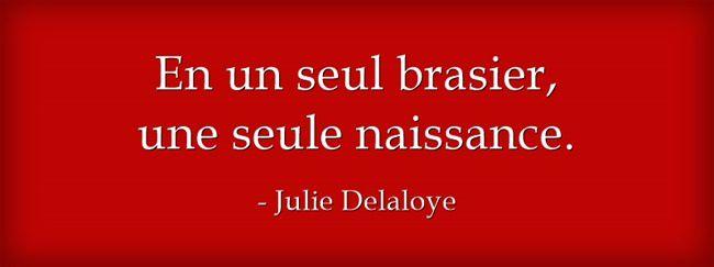 Fulguration - Julie Delaloye