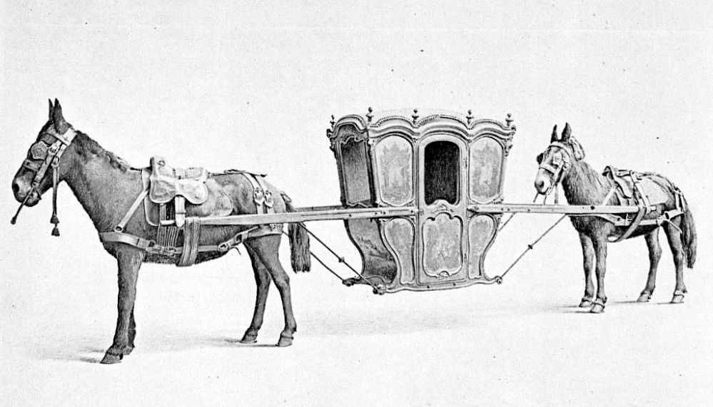 Litière portée par deux chevaux